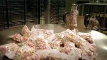 Comment sont fabriqués les bonbons composés de gélatine Voici une vidéo qui ne vous mettra pas en appétit !_512x384