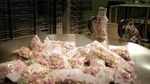 Comment sont fabriqués les bonbons en gélatine