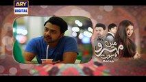 Watch Mein Mehru Hoon Episode 29 on Ary Digital in High Quality 25th August 2016