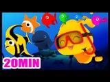 Les petits poissons dans l'eau - Comptines et chansons pour les enfants
