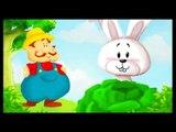 Mon petit lapin - Cherchez moi coucou coucou