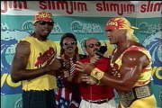 Hulk Hogan vs Vader Bash At The Beach 1995 Steel Cage Match
