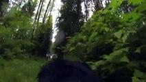 Perro con GoPro capta imágenes de un ¡BigFoot!