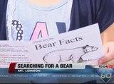 Mt Lemmon Bear Sighting