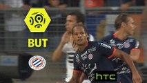 But Daniel CONGRE (22ème) / Montpellier Hérault SC - Stade Rennais FC - (1-1) - (MHSC-SRFC) / 2016-17