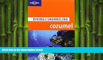 FREE PDF  Lonely Planet Diving   Snorkeling Cozumel (Lonely Planet Diving and Snorkeling Guides)