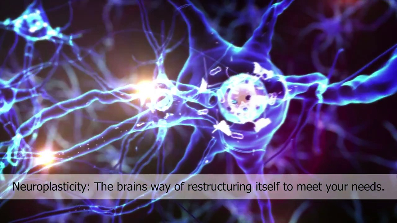 The Science Behind the Brain Center