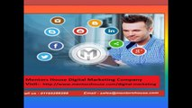 Website development Company - Website Development Services