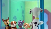 ᴴᴰ Best Animation Movies For Kids New Cartoon Movies In Urdu Pups Save a Floundering Francois-Tg4KBPLXl-6