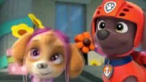 ᴴᴰ Best Animation Movies For Kids New Cartoon Movies In Urdu Pups Save a Floundering Francois-Tg4KBPLXl-15