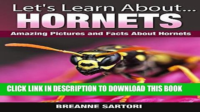 [New] Hornets: Amazing Pictures and Facts About Hornets (Let s Learn About) Exclusive Full Ebook