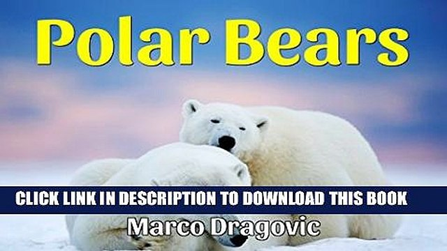 [PDF] Polar Bears: Fun Facts For Kids, Picture Books For Kids Exclusive Online