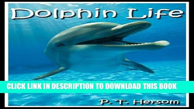 [New] Dolphin Life Funny   Weird Marine Mammals - Learn with Amazing Photos and Fun Facts About