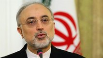 Iran to start building two new nuclear plants on Sept. 10: Salehi