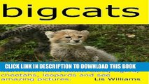 [New] Big Cats - Learn Cool Facts about Lions, Tigers, Leopards and Cheetah and See Amazing