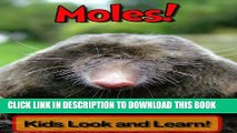 [New] Moles! Learn About Moles and Enjoy Colorful Pictures - Look and Learn! (50+ Photos of Moles)