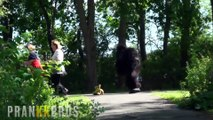 Attack Gorilla banana Prank