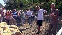 """Hautes-Alpes : Le festival """"""""A Livres Perchés"""" associe bergers et grands auteurs"""