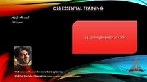 CSS Essential Training Bengali - 44 Color property in CSS