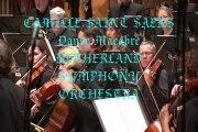 CAMILLE SAINT SAENSE ~ Danse Macabre ~ NETHERLAND SYMPHONY ORCHESTRA Live
