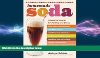 behold  Homemade Soda: 200 Recipes for Making   Using Fruit Sodas   Fizzy Juices, Sparkling