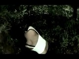 clip video musique Impure Wilhelmina before a dream