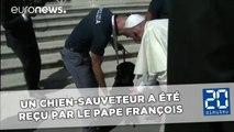 Un chien-sauveteur a été reçu par le pape François