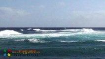 Windsurfing en Fuerteventura. Temporal de viento en Caleta de Fuste.