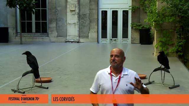 """Sujets à vif 2016 - extrait de """"Les Corvidés"""""""