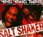 Ying Yang Twins Ft. Lil Jon - Salt Shaker Instrumental Cover