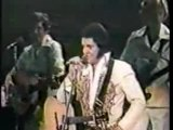 Elvis In Concert - June 19, 1977