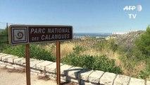Marseille: 390 hectares brûlés dans le Parc des calanques
