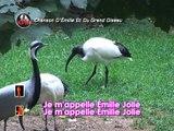 Chanson D'Emilie Et Du Grand Oiseau Karaoké - Émilie Jolie*