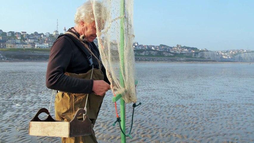 Quelques bonnes pratiques de pêche à pied : la crevette