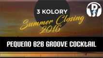 Pequeno B2B Groove Cocktail 3 Kolory Summer Closing 2016