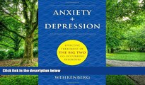 Big Deals  Anxiety + Depression: Effective Treatment of the Big Two Co-Occurring Disorders (Norton
