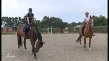 Éducation : La 1ère section sportive équitation à Chantonnay