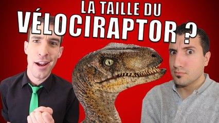 IDÉE REÇUE #12 : La taille du Vélociraptor (feat. Taupe10)