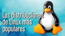 Principales distros de Linux
