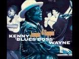 A FLG Maurepas upload - Kenny 'Blues Boss' Wayne - Blues Stew