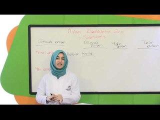 6. Sınıf Türkçe Eğitim Seti (Anlam Özelliklerine Göre Sözcükler)