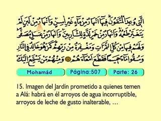 55. Mohamad 1-38 - El Sagrado Coran (Árabe)