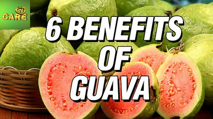 6 Benefits Of Guava | Care Tv
