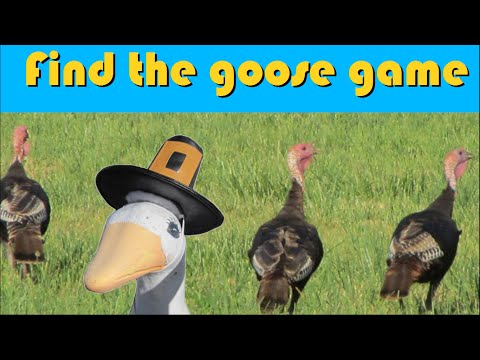 Find the Goose Game: Charlie & Turkeys – The Kids' Picture Show (Fun & Educational Learning Video)