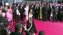Sophie Marceau : ses relations avec Julie Gayet après avoir taclé François Hollande (vidéo)