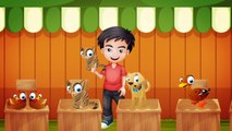 Pazara Gidelim Bir Tavuk Alalım - Çocuk Şarkısı   Cocukca