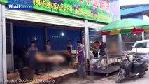 Chợ thịt chó tại thành phố Ngọc Lâm, Trung Quốc