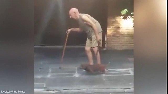 Cảm động với chú chó kiên nhẫn nhất quyết không rời chủ