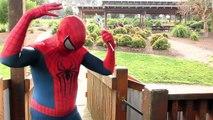 Spiderman Vs Spidergirl - Superhero Battle! w_ Hulk and Joker Superhero Time Adventures