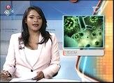 Nuevas informaciones sobre el nuevo virus Mayaro y lo que puede ocasionar